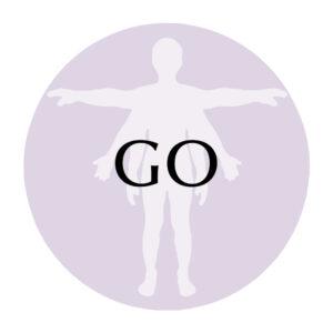 GO PROTOCOL